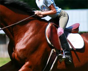 Jockey On English Saddle